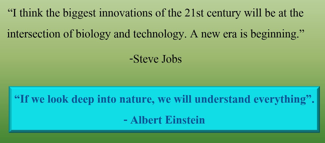 Quotes-nature-learning